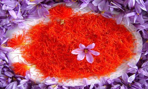 nhuy hoa nghe tay saffron dieu tri chung chuot rut an toan - Nhụy Hoa Nghệ Tây Giúp Phòng Và Điều Trị Chứng Chuột Rút