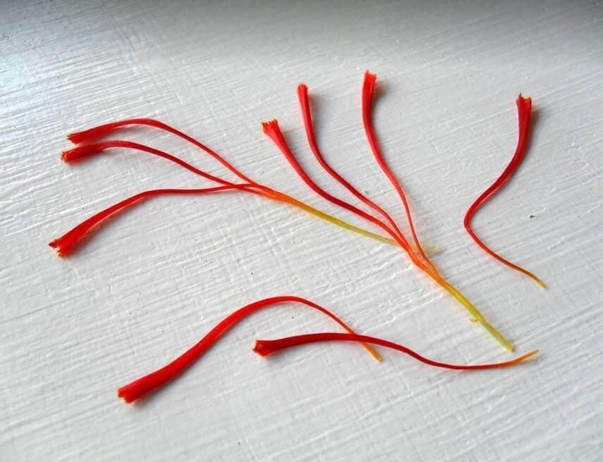 phan biet nhuy hoa nghe tay bang mat thuong - Phân Biệt Nhụy Hoa Nghệ Tây Thật Hay Giả Đơn Giản