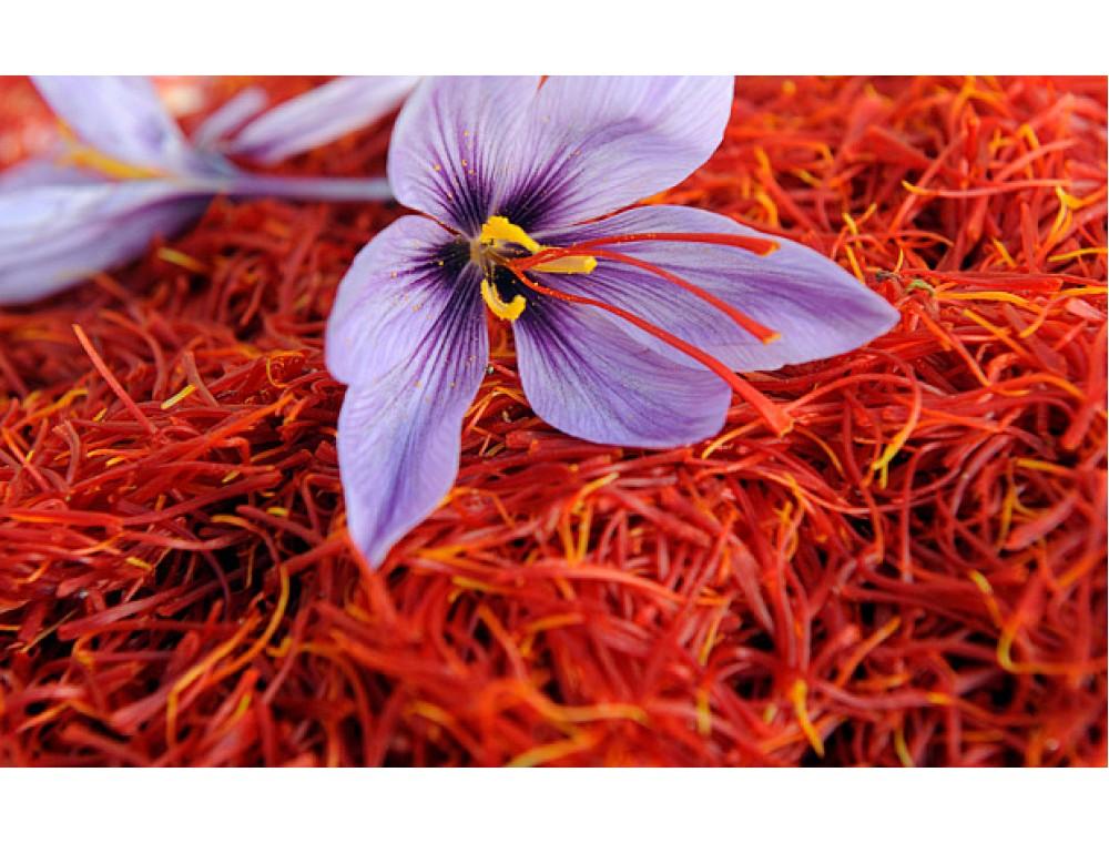 saffron giup toc mem muot - Ngăn Rụng Và Nuôi Dưỡng Tóc Hiệu Quả Với Nhụy Hoa Nghệ Tây